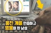훔친 개를 인터넷에 인증하고 박수받은 남성