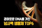 경이로운 DNA를 가진 동물들 Top6 (영상)