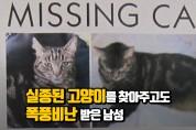실종된 고양이를 찾아주고도 욕 먹은 남성 (영상)