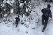 숲으로 뛰어가는 남자 사진에 담긴 2가지 비밀