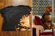 변기에 대한 열정을 티셔츠에 담다, 디자이너 아폴로 선생님