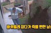 바퀴벌레 잡다가 죽을 뻔한 남성(영상)