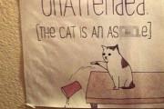 '쥐 좋아하세요?' 재밌는 고양이 경고문 모음
