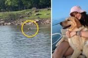 가족이 보트를 타고 떠나자 호수에 뛰어든 댕댕이