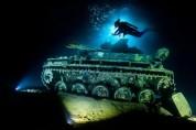 신비로움과 공포가 공존하는 바다의 세계 '2021 수중사진전'