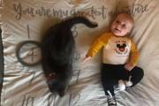 5년간 까칠했던 고양이가 아기를 만났을 때