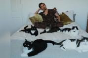 '어떡하죠' 집안에서 길고양이 가족과 마주친 남성